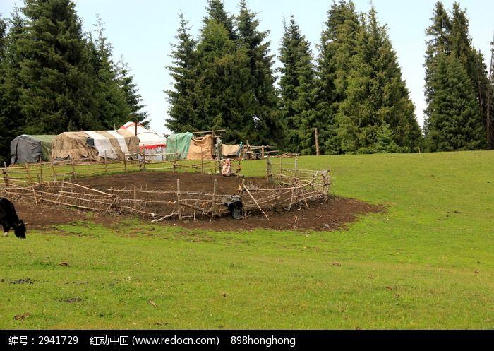 自然风景 草原风光  绿草地  松树林  帐篷  蒙古包 牲畜圈  森林