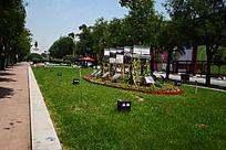 西安大唐不夜城的广场绿化