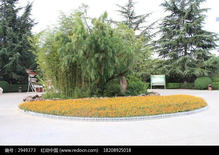 小花园与树图片,高清大图_树木枝叶素材