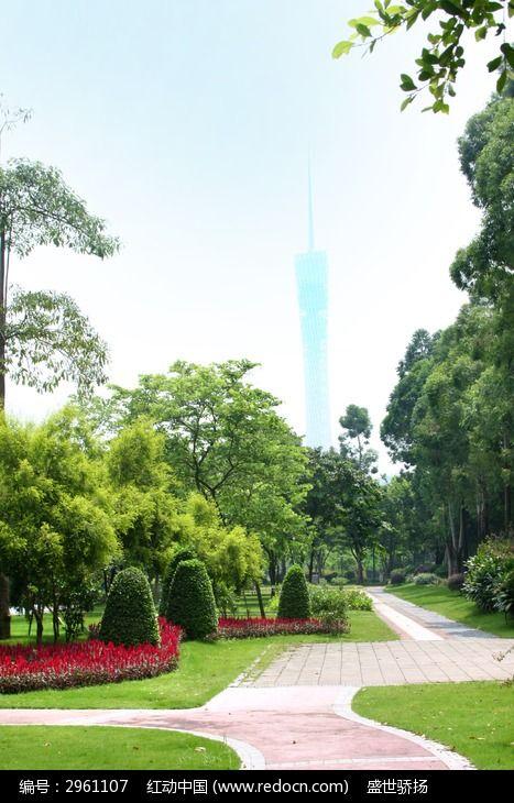 二沙岛风景图片,高清大图_树木枝叶素材