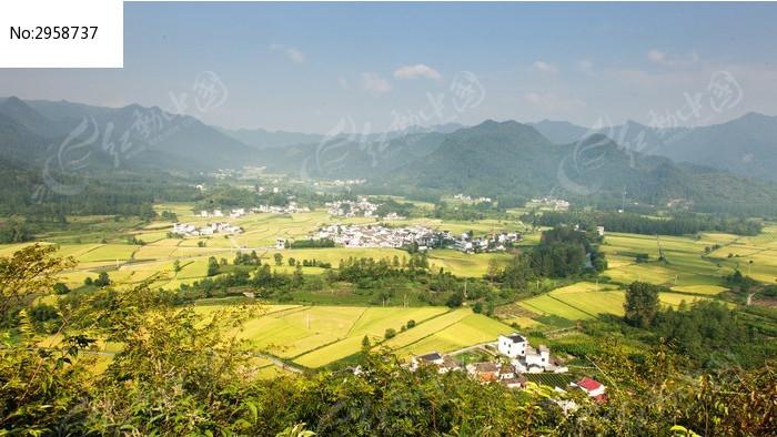 美丽 大地 稻黄 丰收 金黄 黄山 皖南 自然景观 群山 自然美景 俯视 秋
