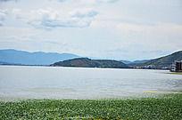 海草与蓝天