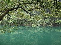 湖畔风景倒影图