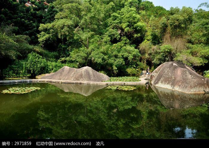 万石植物园小池一角