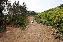 五溪山陡峭的林道