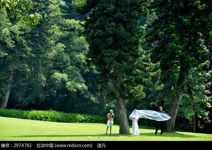 绿草坪上拍婚纱照的人图片