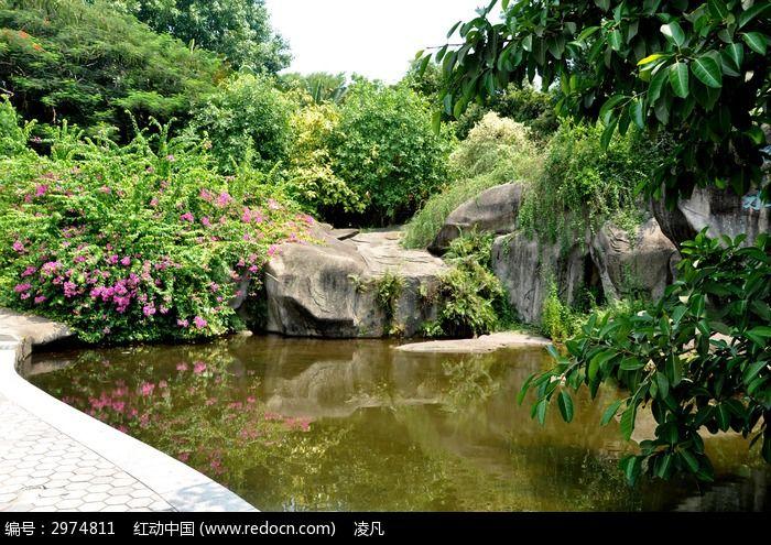 万石植物园的小湖泊
