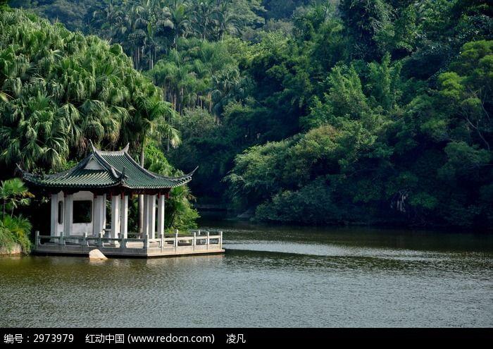 万石植物园亭子边的湖泊