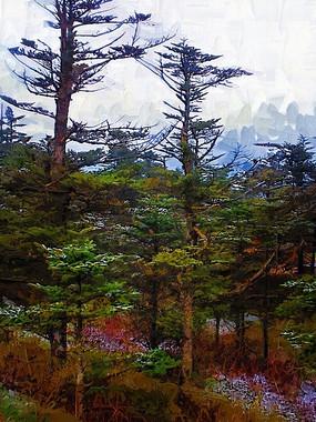 冬季松柏树林油画