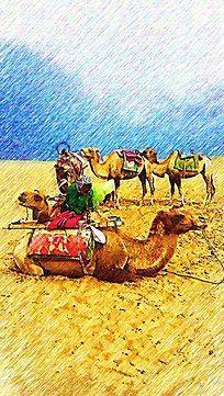 沙漠骆驼彩画