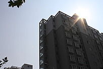 阳光下的大厦剪影效果