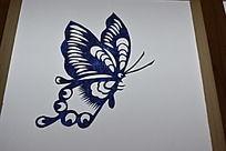飞舞翩翩的蝴蝶剪纸艺术