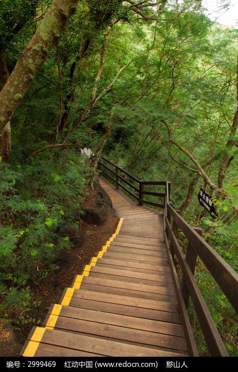 木质旅游栈道