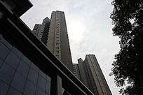 剪影效果的大厦建筑