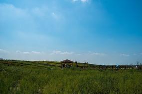 蓝天白云下辽阔的草原和凉亭