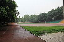 下雨中的球场景色
