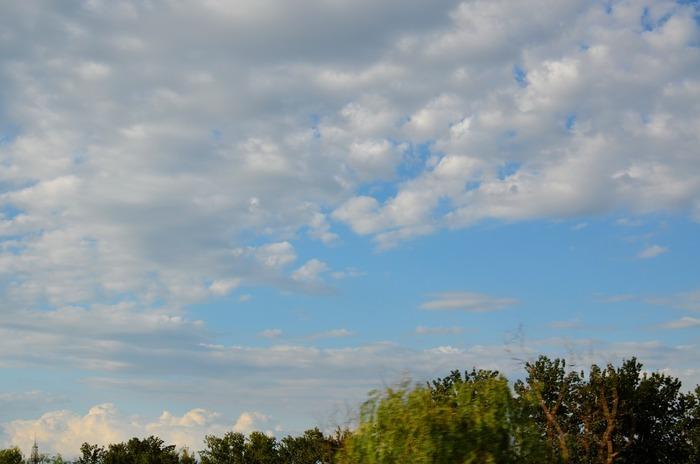蓝天  白云   云彩   云团    树木   唯美天空