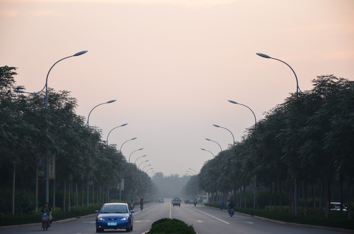 傍晚的马路及两侧的路灯图片