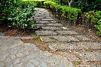 鼓浪屿的石头小路