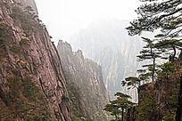 黄山春  黄山峡谷