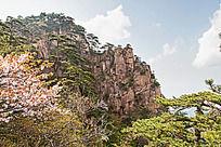 黄山春  清凉台的自然风景