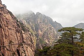 黄山春  山峰的悬崖绝壁
