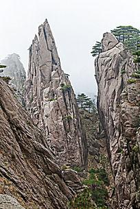 黄山春  峡谷奇峰