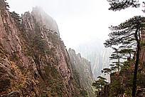 黄山春  悬崖
