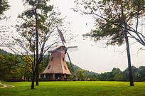 绿草地上的大风车
