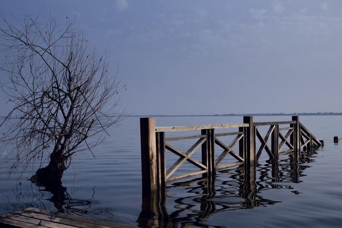固城湖水中的木栏杆