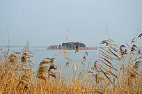 固城湖中的孤岛