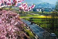 明媚的山村景色