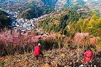 摄影人喜爱卖花渔村