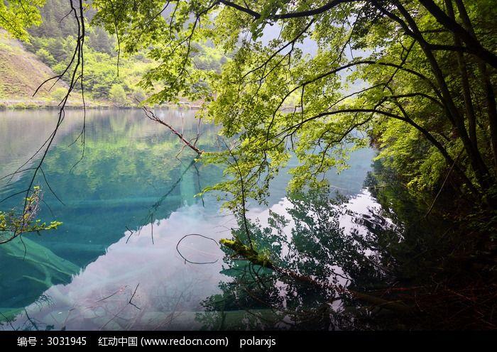 树荫下的蓝色海子图片,高清大图_江河湖泊素材
