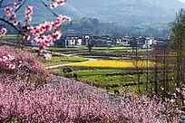 黟县塔川的田野家园