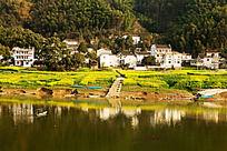 新安江的生态环境