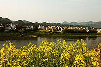 新安江自然风光