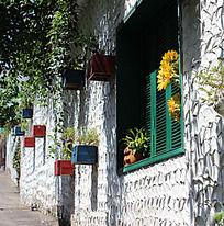 装饰墙  花盆  绿色窗