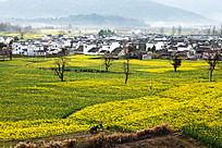 黟县卢村村落
