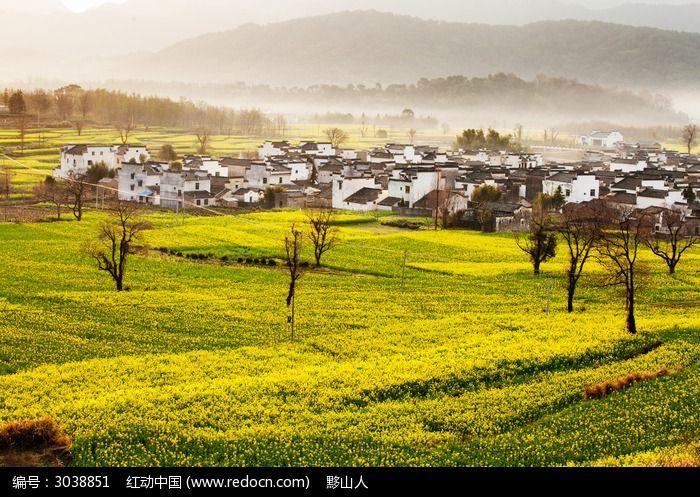 黟县卢村的春色图片