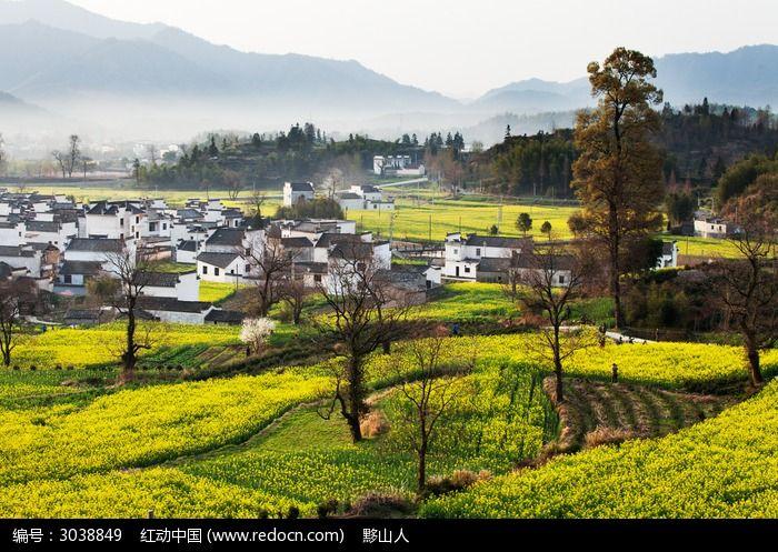 黟县卢村的自然生态图片