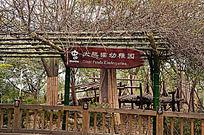 大熊猫幼稚园