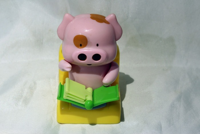 粉色猪看书玩具图片,高清大图