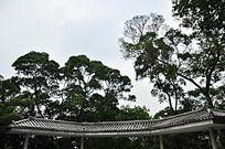 公园古建筑长亭