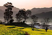 晨光下的卢村