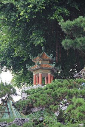 树木遮掩下的亭子建筑风光