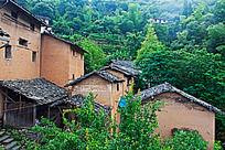 翠绿树林中的几幢土楼