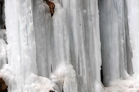 结冰的瀑布