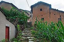 阳产村落入口的石板路