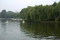 北京大学湖畔美景